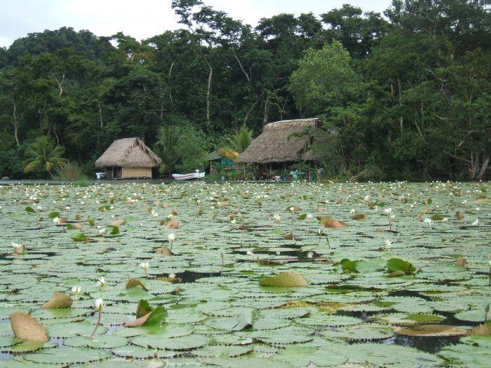 Recorriendo Guatemala. Foto Mireia Olle
