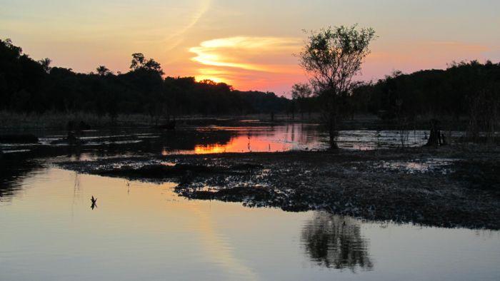 Expedición a la Amazonia brasileña. Foto Margarida Serra