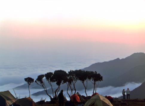 Así es la ascensión al Kilimanjaro siguiendo la ruta Machame. El vídeo de Alexandre Ruzafa nos muestra una ... <br> <a class='vermellteula'>Seguir leyendo >>></a>