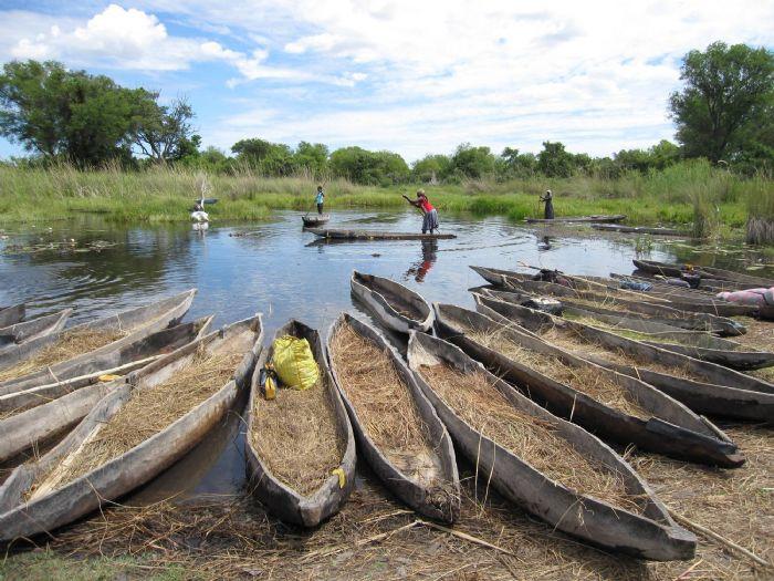fotos de Botswana autor:Sunway Safaris