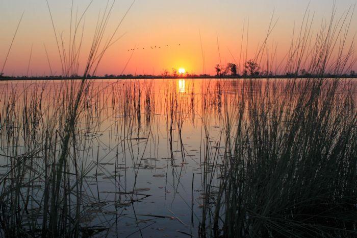 fotos de Botswana autor:Josep Mas