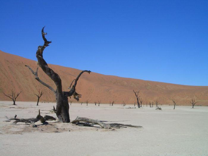 fotos de Namibia autor:Karibu Safaris
