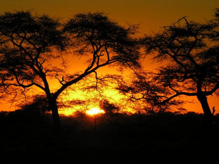 Arenas del Namib, etnias del norte y vida salvaje. Foto Kananga