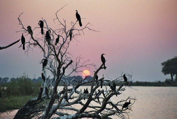 fotos de Namibia autor:R Muntane