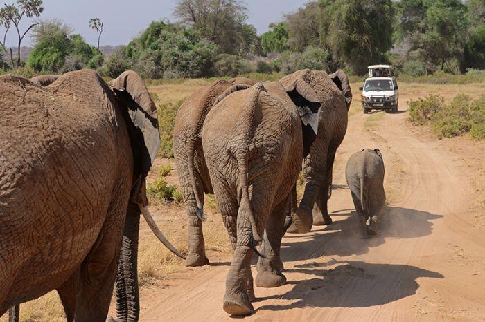 fotos de Tanzania autor:Sergi Ventura