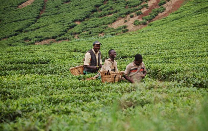 fotos de Uganda autor:Ines Garitagoitia