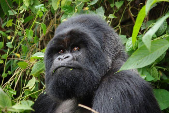fotos de Uganda autor:Jose Maria Garrido
