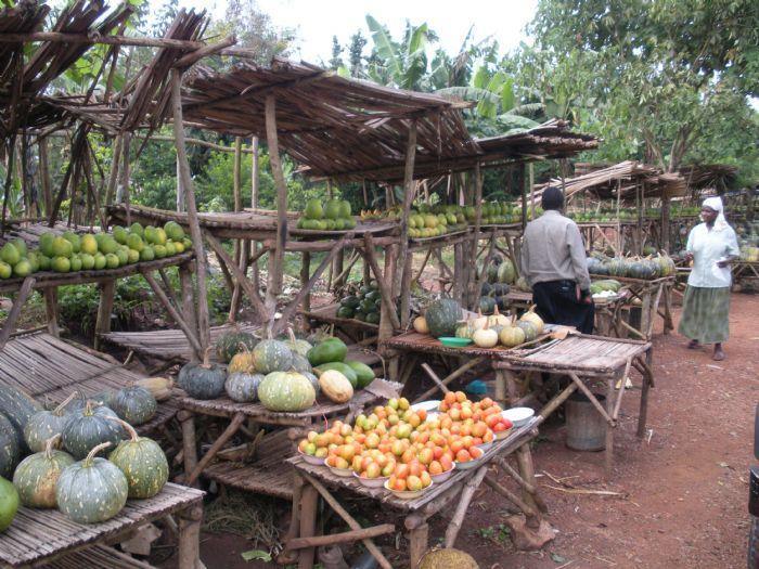 fotos de Uganda autor:Victor Gil