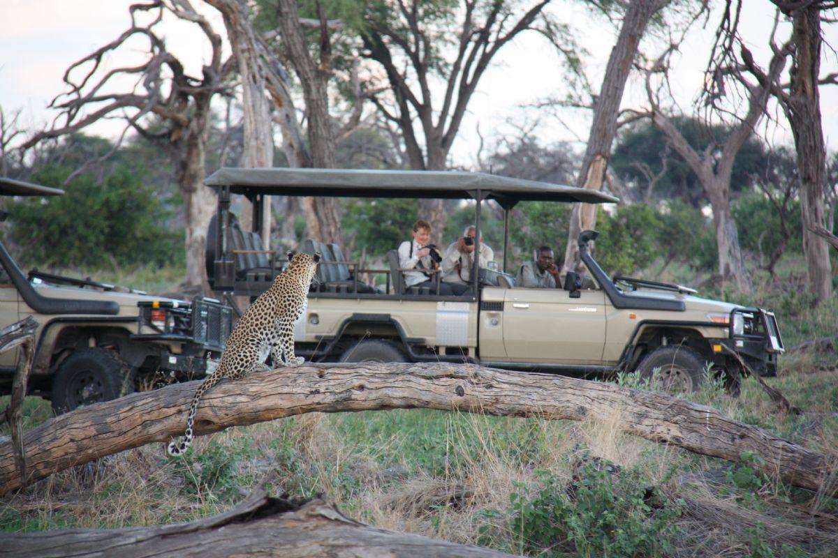 fotos de Zimbabwe autor:Kananga