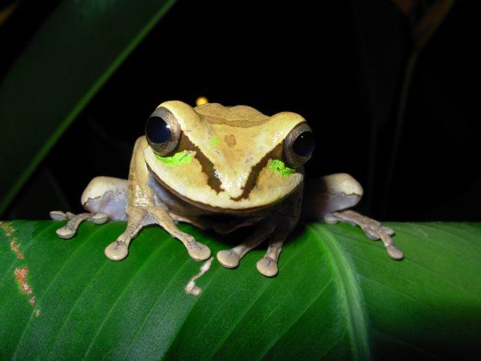 fotos de Costa Rica autor:Patricia Perez