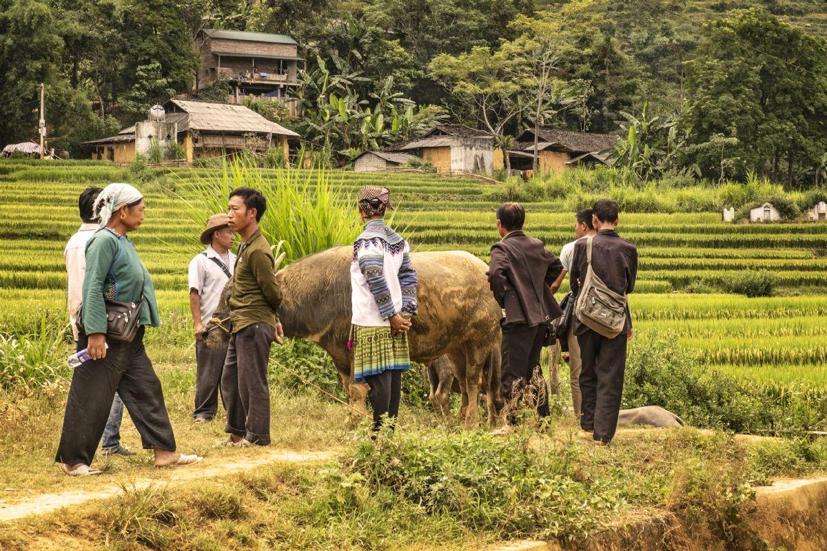 fotos de Camboya autor:D. Souteyrant