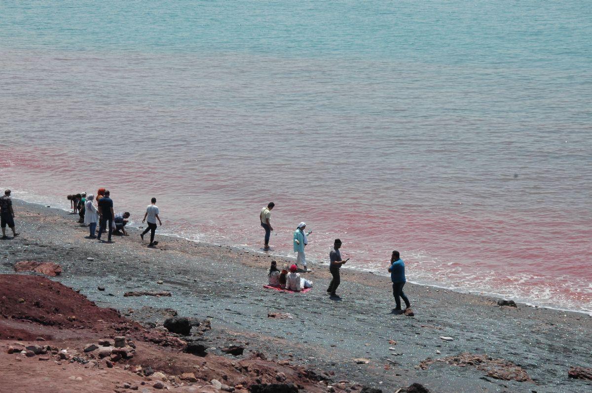 fotos de Irán autor:L. Lozano