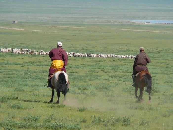 fotos de Mongolia autor:J F Fernandez Salaza