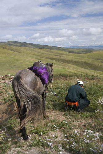 fotos de Mongolia autor:Jorge Fresno