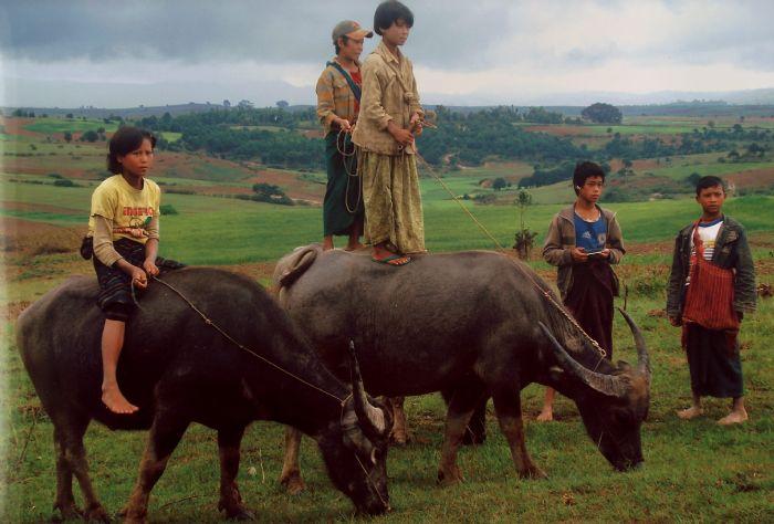 fotos de Myanmar (Birmania) autor:V. Vadillo