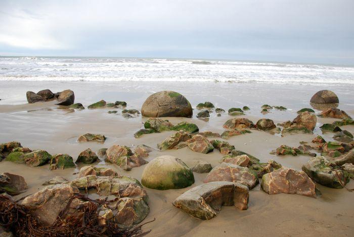 fotos de Nueva Zelanda autor:Dolors Paré