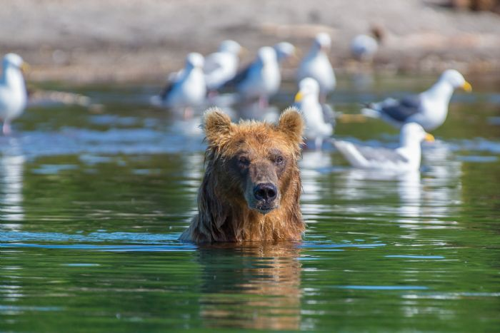 fotos de Rusia autor:Javier Pulido