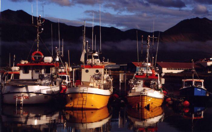 fotos de Islandia autor:Assumpta Gonzalez