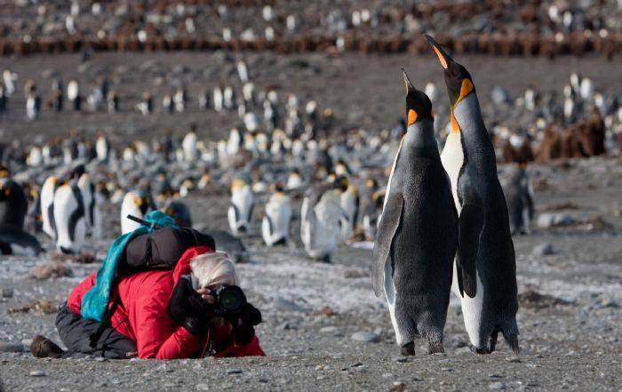 fotos de Antártida autor:J.Veen
