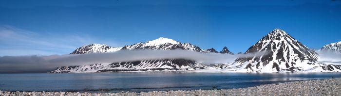 fotos de Ártico autor: