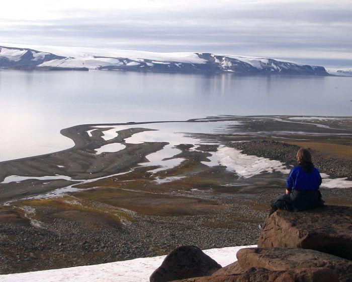 fotos de Ártico autor:J.M. Ordax