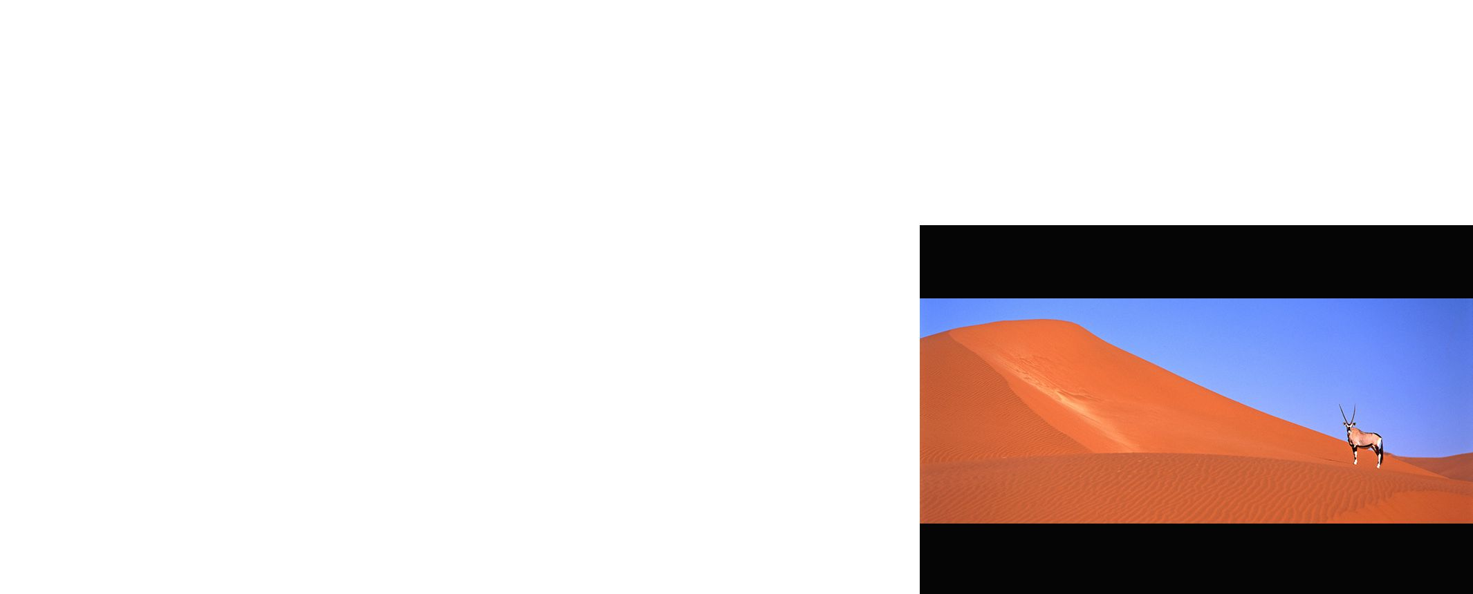 Observando la Vía Láctea. Foto Archivo Tuareg