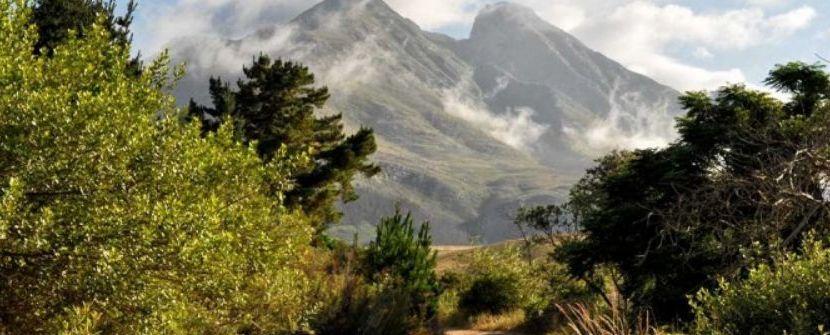 Explorando Western Cape. Caminatas por las reservas naturales.  – Salida 28 Dic con acompañante desde Barcelona.