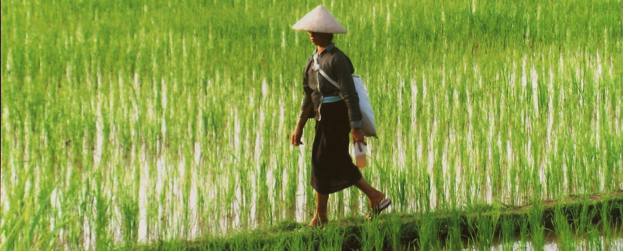 Laos y Camboya