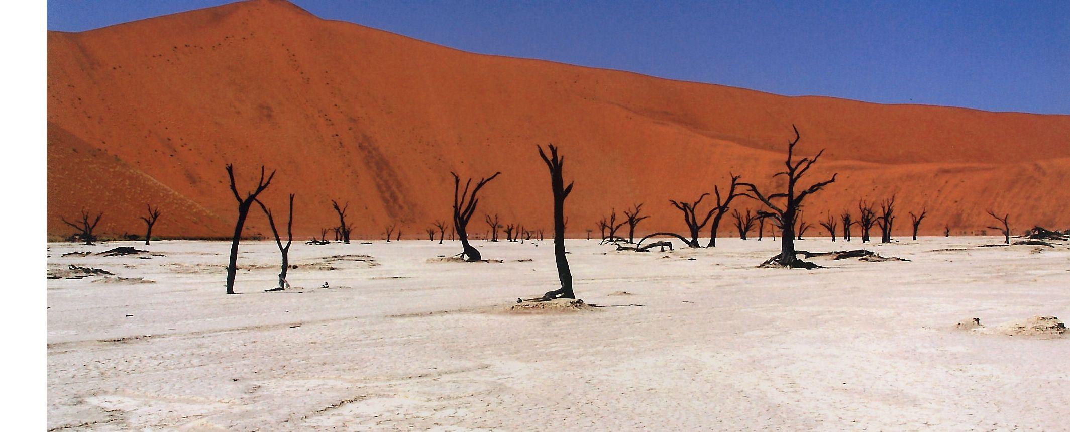 Namibia -  Arenas del Namib, etnias del norte y vida salvaje en Etosha  - Especial fotográfico. Salida 10/7