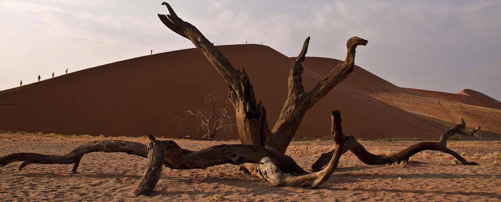 Namibia -  Esencia de Namibia - Salidas regulares de Enero a Diciembre