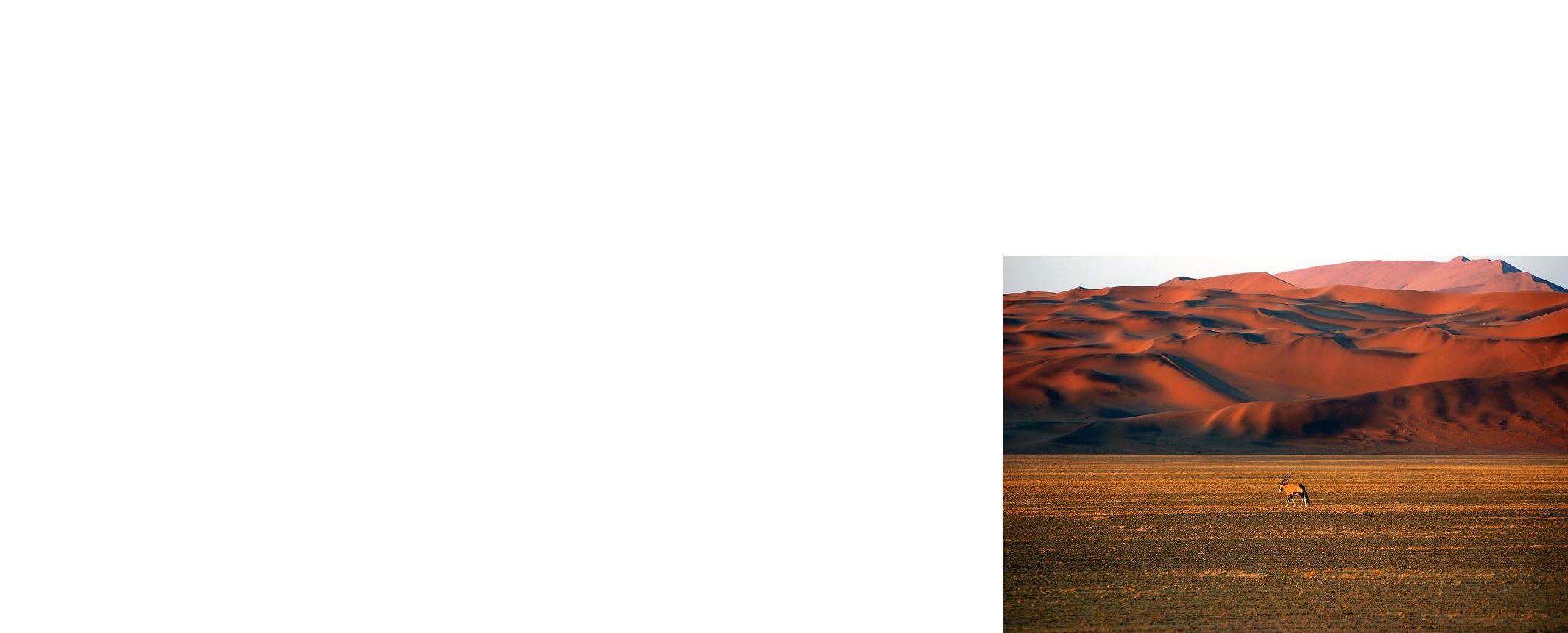 Namibia y Botswana -  Desierto del Namib, Parque Nacional Etosha, Chobe y Cataratas Victoria -
