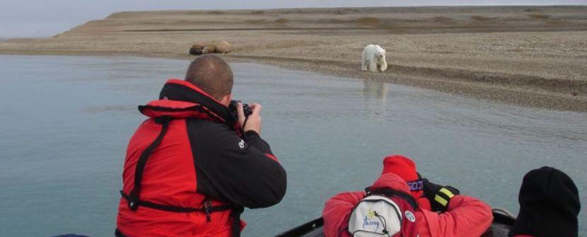 Cruceros de expedición al archipielago de Svalbard  – M/V Plancius y Ortelius. Salidas de JUN a AGO