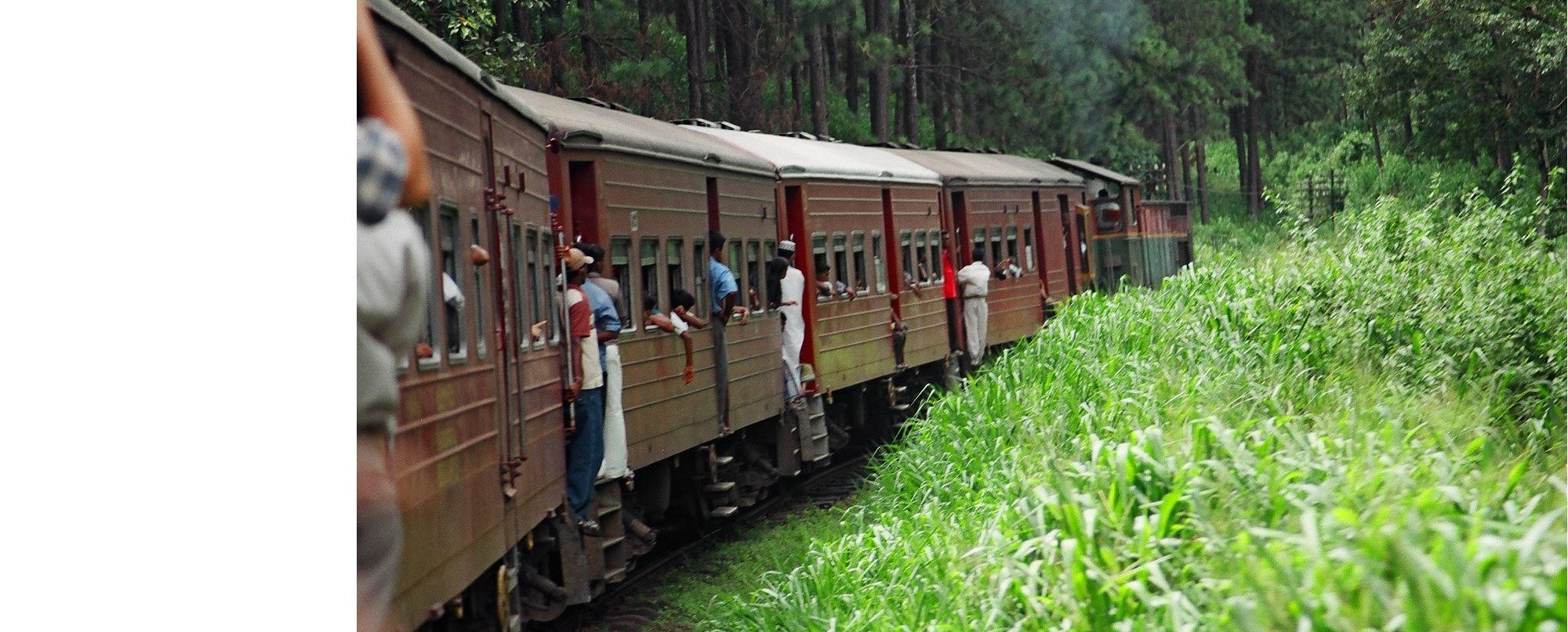 SRI LANKA. La gran isla del Índico