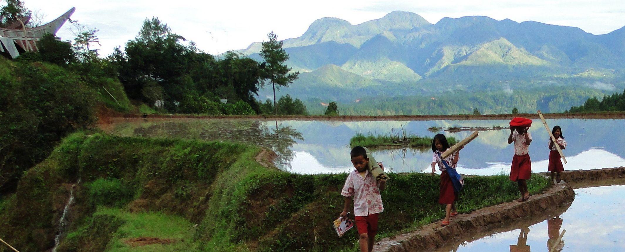 Borneo, Sulawesi y Bali con opción Parque de Komodo  – Salidas de JUN a OCT