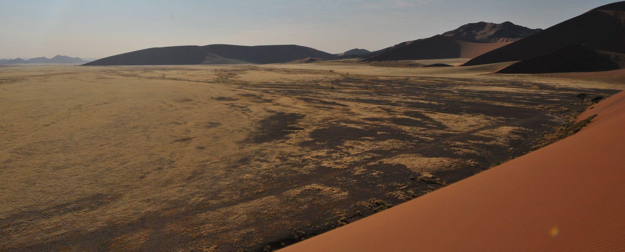 Safaris y Estrellas. El cielo austral de la mano de Juan Carlos Casado  – salida 31 de julio