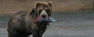 Rusia - Kamchatka